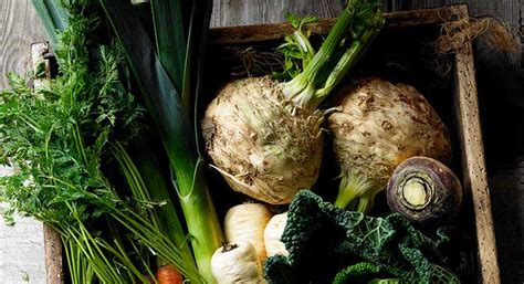 What is Swede (Amazing Facts and Delicious Recipes)