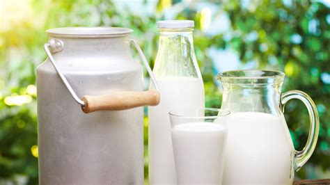 Unprocessed Cow's Milk Found to Prevent Asthma and
