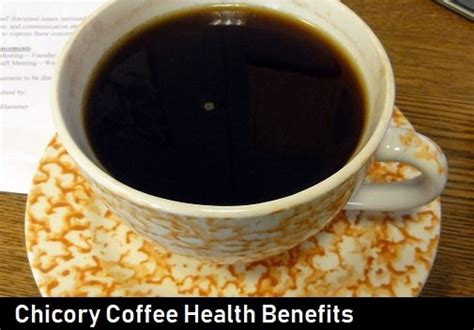 Chicory Health Benefits & Side Effects - Root Extract