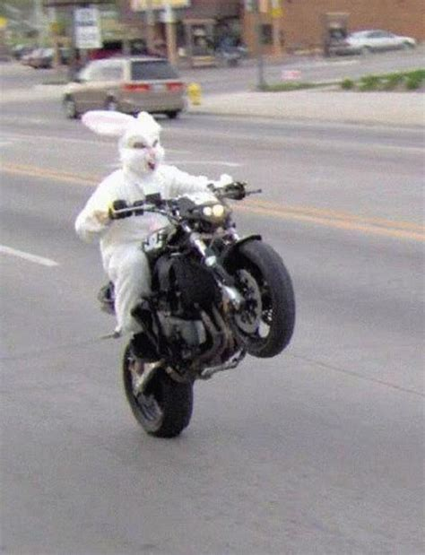 Easter Bunny Is Crazy For Wheelies News - Top Speed