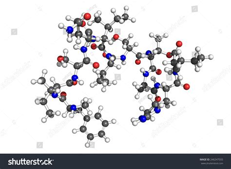 Teixobactin Is A Recently Discovered Antibiotic, Active