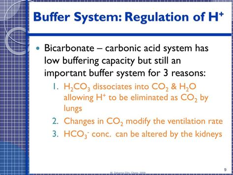 PPT - Blood Gases, pH and Buffer system PowerPoint