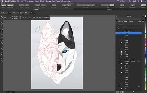 CorelDRAW Graphics Suite 2019: Now on the Mac and the web