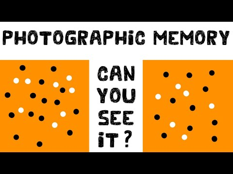 Photographic Memory Test: Are You Able To Remember