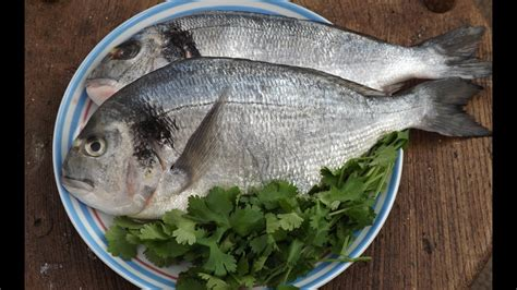 How To Prepare And Cook Sea Bream