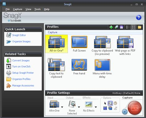 Snagit 10 Features, Effects and Tips