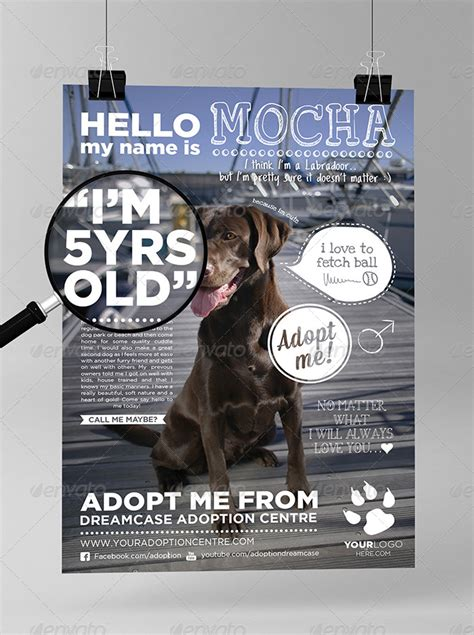 Animals - Adopt Me Flyer by Dreamcase | GraphicRiver